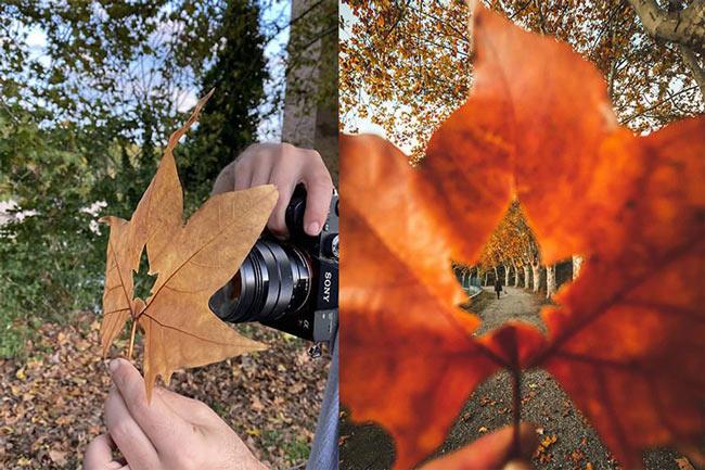 عکاسی خلاقانه